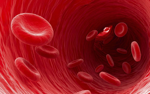 Bemer – Terapia Vascular Física